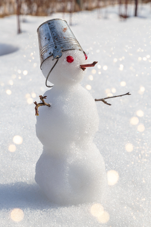 miniature snowman with a bucket on his head.