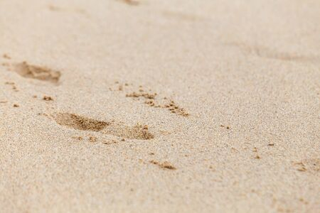 Footprints in the sand. Selective focus Imagens