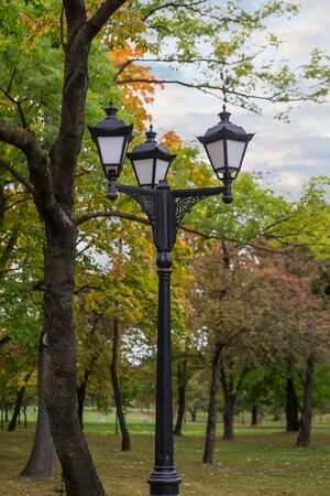 Street lamp with three shades on the background of autumn Park with yellowing leaves. 写真素材