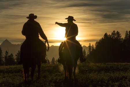 Cowboys riding across grassland with moutains behind, early moring, British Colombia, B.C., Canada