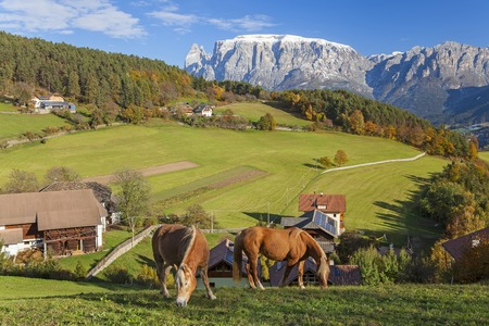 Valley & Dolomites nr Bolzano, Trentino-Alto Adige South Tyrol, Italy