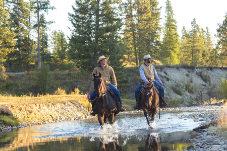 Cowboys & horses walking through river, British Colombia, B.C., Canada, North America