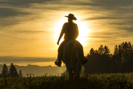 Cowboy riding across grassland with moutains behind, early moring, British Colombia, B.C., Canada Stock Photo