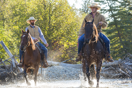 Cowboys & horses, British Colombia, Canada, North America