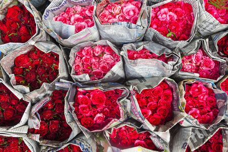 Roses for sale, flower market, nr Chinatown, Bangkok, Thailand 版權商用圖片