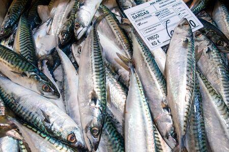 Varieties of fresh fish in market in Tavira, Algarve Portugal 版權商用圖片