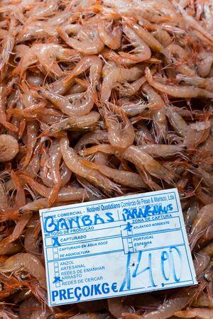 Fresh shrimps in Algarve fish market, Portugal