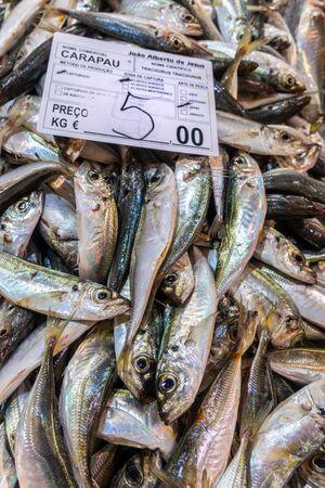 Fresh carapau or horse mackeral in fish market, Algarve, Portugal