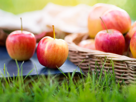 Red ripe apple in basket in autumn vibes for healthy food concept. Stock Photo