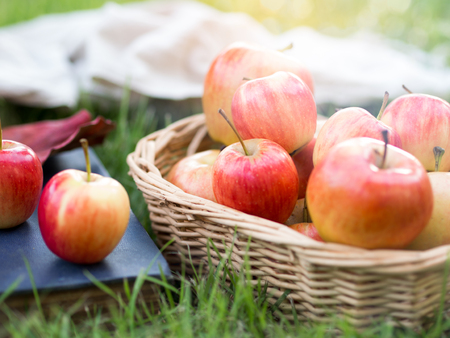 Red ripe apple in basket in autumn vibes for healthy food concept. 스톡 콘텐츠