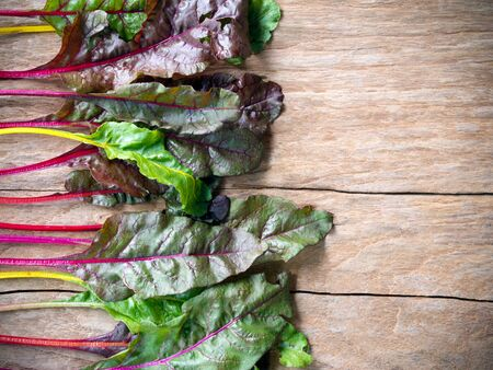 Fresh rainbow swiss chard vegetable on wooden table with copy space for healthy food concept.