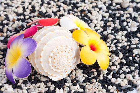artificial flower: Artificial flower on small pebble background Stock Photo