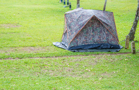 campground: tent camping on the campground