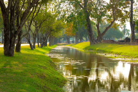 Freshness canal in the morning park