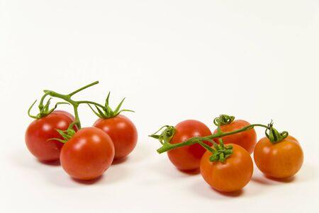verse biologische wijnrankbladeren tomaat op een witte achtergrond Stockfoto