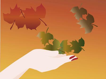 vrouwen hand vangst vallende bladeren Stock Illustratie