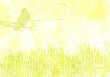 washed out: washed out illustration of grassy meadow with bird on tree branch Stock Photo