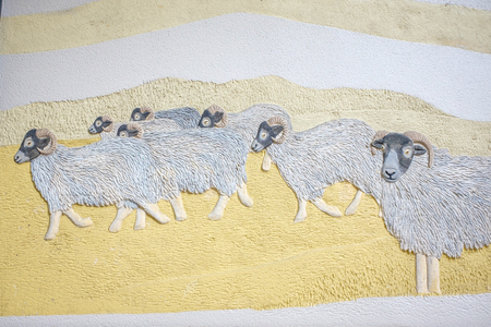 wall mural of flock of sheep Stock Photo
