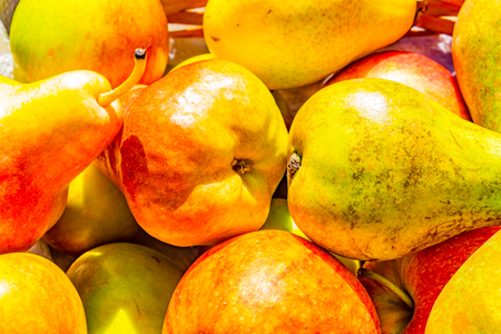 selection of cox apples and blush and conference pears