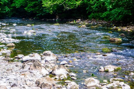 River Kent running over the rocks and pebbles with tree lined banks in summer