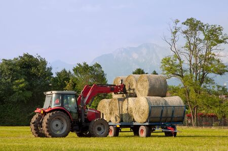 Tractor putting hay bale on barrow photo