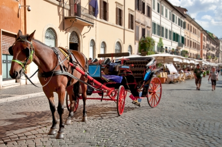 Horse and coach waiting at Piazza Navona - buildings background - Roma - Italy Stock Photo