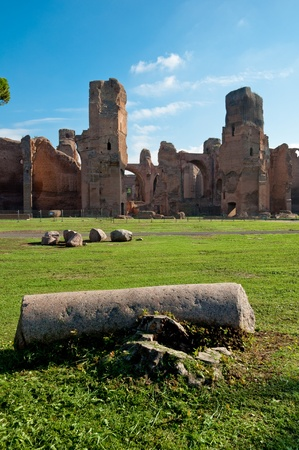 View of Caracalla springs ruins from grounds with column at Rome vertical Stock Photo - 18782325