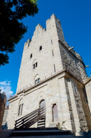 Tour du treseau at Carcassonne in France Redakční