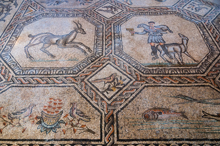 trieste: Animal and people mosaics inside Basilica di Aquileia in Italy Editorial