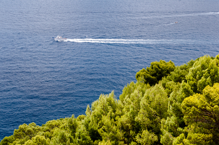Vegetation, sea and boat on Capri coast - Italy