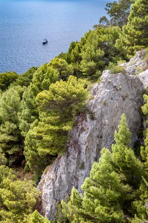 golfo: Rocks and vegetation on a cliff of Capri island - Italy