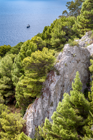 Rocks and vegetation on a cliff of Capri island - Italy
