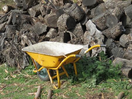 carretilla: Carretilla amarilla