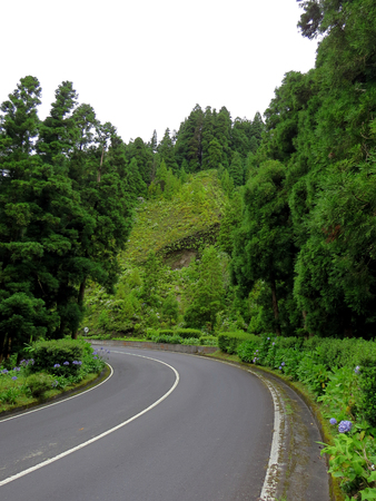 twisty: Bend in the road