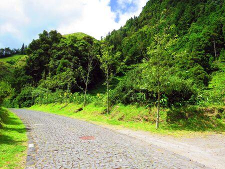 cobbled: Cobbled road