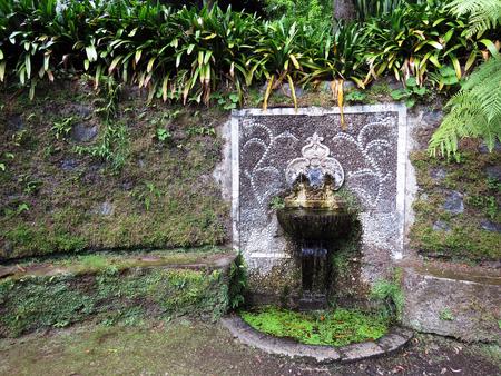 source d eau: Source d'eau avec deux ressorts Banque d'images