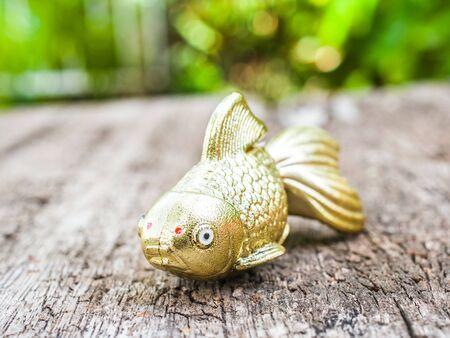 richness: Goldfish