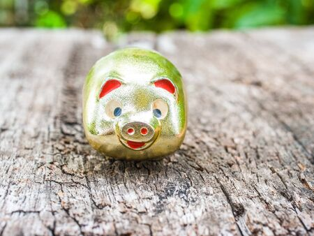 customs and celebrations: Gold pig