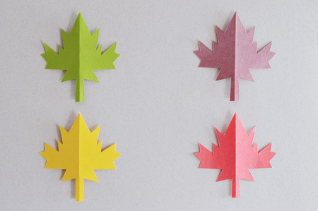 Handmade autumn leaves of different colors arranged creatively for your autumn projects or crafts publications.