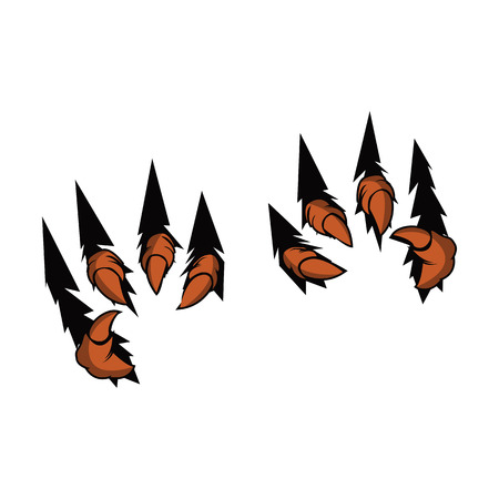 Eagle Claw Talons vector