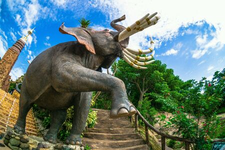 Elephant biggest test