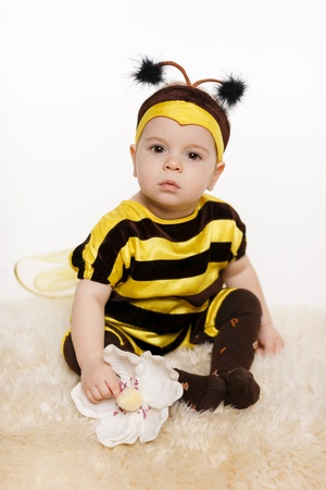 bee on white flower: Baby earing bee costume sitting on the floor, holding flower, on white background