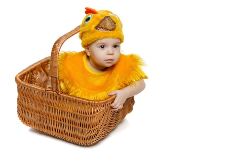 Baby sitting in Easter basket in chicken costume, isolated on white background, with copy space  Easter holiday concept  photo