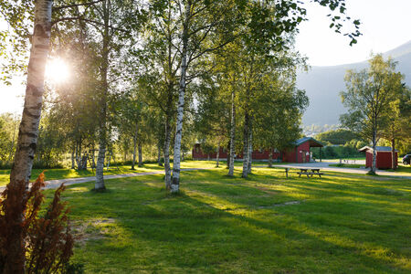Sunset in camping. Sun rays lighting the camping through birch leaves, Norway photo