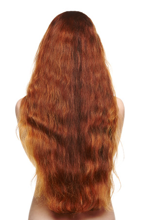 Beautiful long red hair woman, back view photo