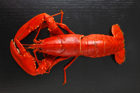 lobster dinner: Top view at boiled Atlantic Lobster on dark wooden table.