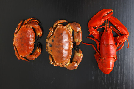 Top view at boiled Atlantic Lobster and crabs on dark wooden table.