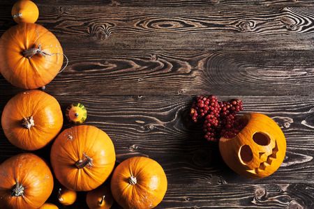 Halloween pumpkins over wooden background, top view, flat lay with copy space for text, toned image