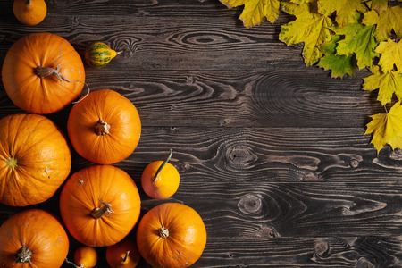 Pumpkins and yellow maple leaves over wooden background, top view, flat lay
