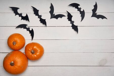 Halloween card. Pumpkins and black paper decoration bats on white wooden planks, with blank copy space